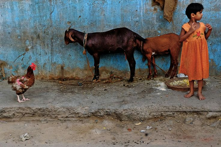Vineet Vohra - Passionate Street Photographer from India