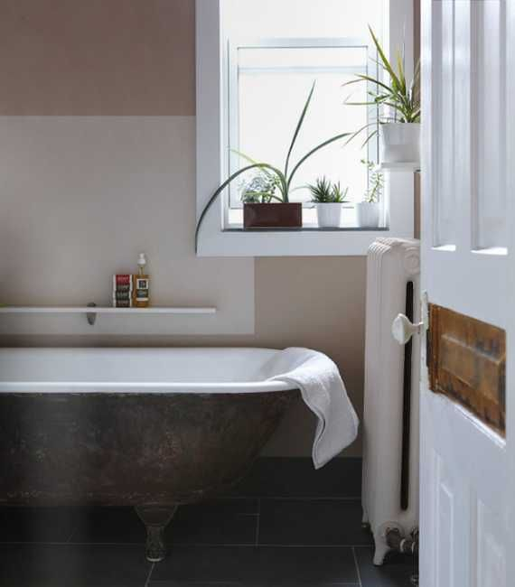 Bathroom Plants, Best Bathroom Plants And Home