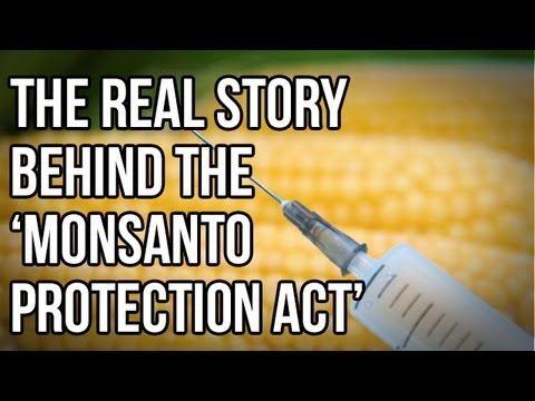The Real Story Behind the 'Monsanto Protection Act' - most people do not realize the connection between our toxic food industry specifically monsanto, and the rise in cancer rates.