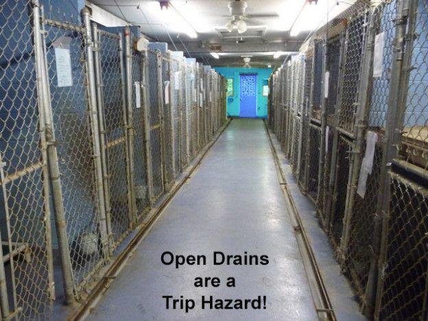 Kennel Floors Drainage System Kenneldesignusa Com Dog Boarding Kennels Kennel Dog Playground