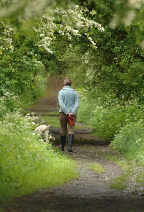 Live like Elizabeth Bennet: Walk in nature. austenandbennet.co #JaneAusten #PrideandPrejudice #ElizabethBennet
