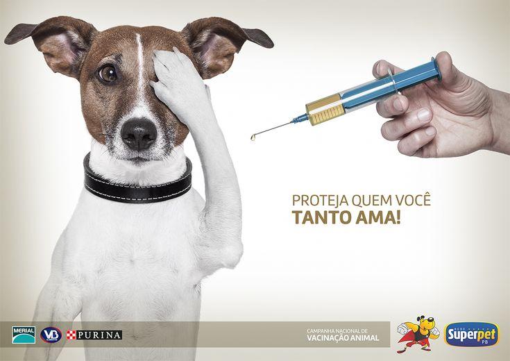 Confira meu projeto do @Behance: \u201cCampanha de Vacinação para a Rede Super Pet\u201d https://www.behance.net/gallery/46607573/Campanha-de-Vacinacao-para-a-Rede-Super-Pet