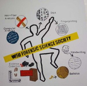 forensic science coursework Forensic science forensic laboratories: medical examiner coroner supplement coursework with forensic science classes to increase knowledge of principles.