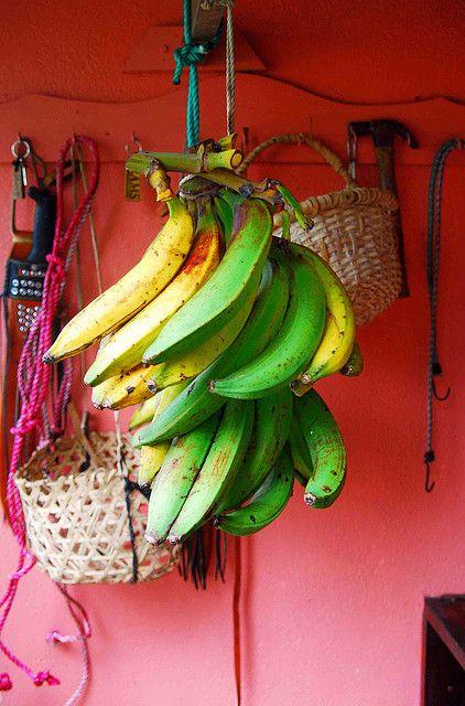 Bananas in Costa Rica