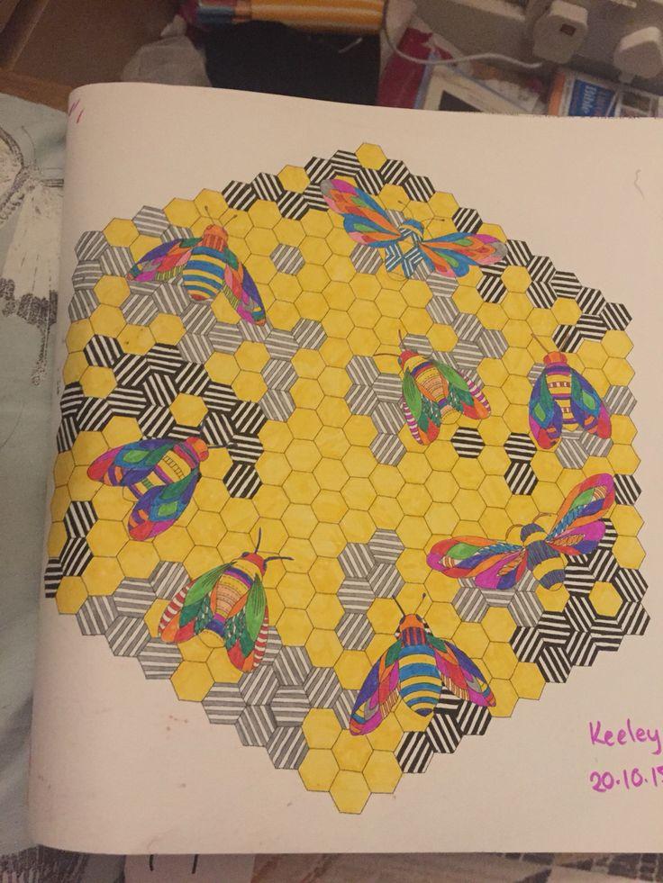 195 Best Animal Kingdom Colouring Images On Pinterest