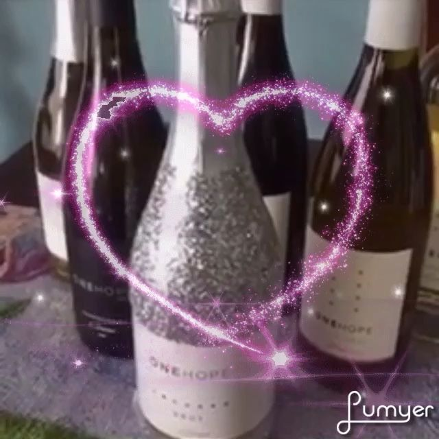 14 best gift ideas images on pinterest gift ideas gifts and wine glitter bottles of sparkling brut provide 15 meals to hungry children in the usa glitter bottlesmealscharityusaeasterchildrenwinegift negle Images