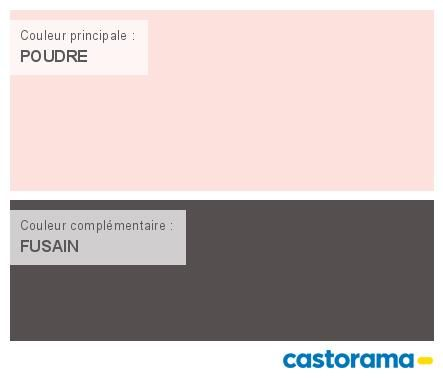 Castorama nuancier peinture mon harmonie peinture poudre satin de tollens - Tollens prestige premium ...
