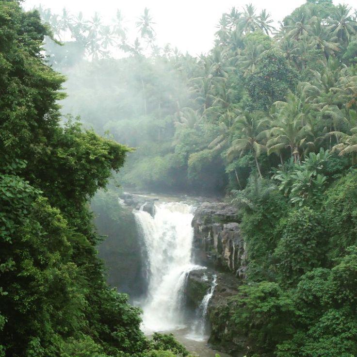 Chasing waterfalls on our Sambangan Nature Trek.