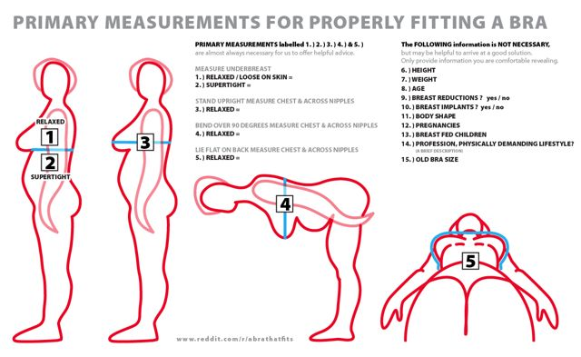 17 best images about Bra sizing and breast anatomy... on ...