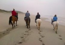 Drikus Horse Trails - Horse Riding Trails and Beach Horse Rides in Paternoster on the West Coast of South Africa.