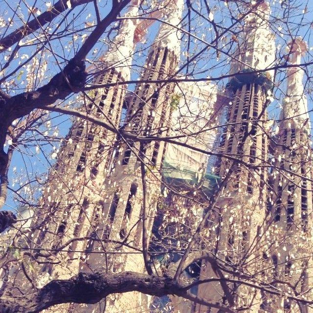 Autumn @ Sagrada Família, Barcelona (Spain)