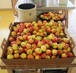 Spiced Crabapples and Honey Cinnamon Crabapples -- Canning Recipes