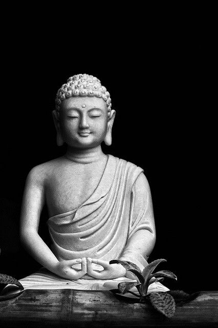 """Words do not express thoughts very well; every thing immediately becomes a little different, a little distorted, a little foolish. And yet it also pleases me and seems right that what is of value and wisdom of one man seems nonsense to another.""   ― Gautama Buddha♥♥♥"
