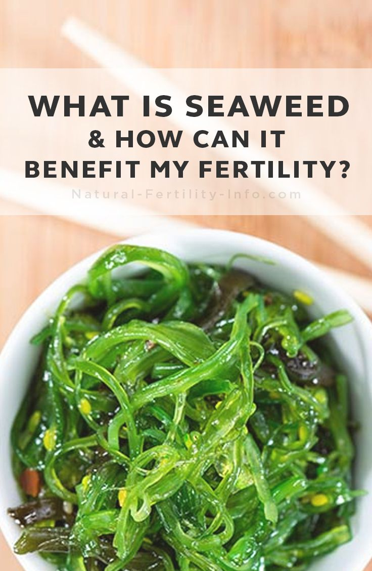 What is seaweed and how can it benefit my fertility? Seaweed is beneficial for fertility health for many different reasons. Seaweeds, also known as sea vegetables, are very high in nutrition. In fact they contain 10-20 times the vitamins and minerals of land vegetables.  #fertilitytips #fertilitydiet #fertility #naturalfertility #eathealthy #NaturalFertilityInfo #NaturalFertilityShop