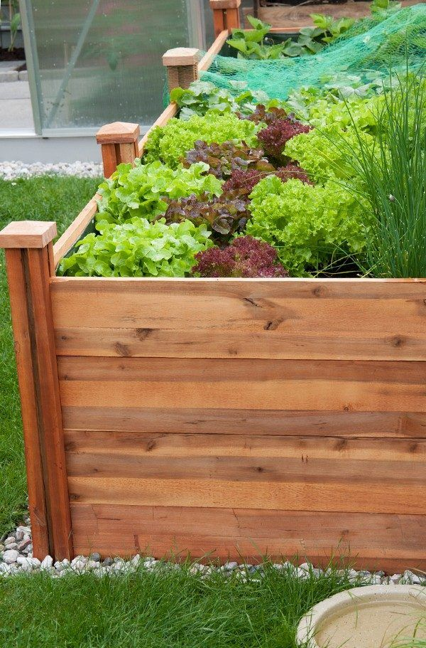 Mer Enn 25 Bra Ideer Om Selber Bauen Komposter På Pinterest ... Bio Komposter Aus Holz Selber Bauen Anleitung In Einfachen Schritten