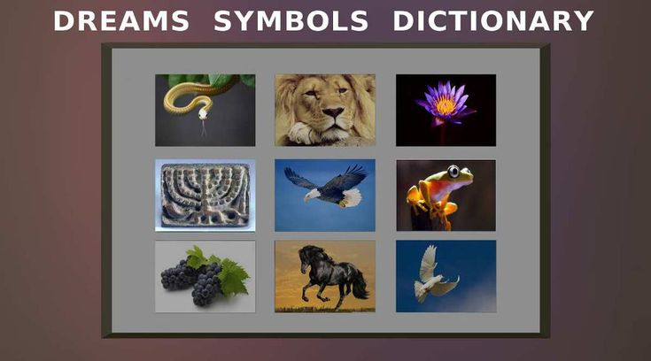 Dreams Dictionary On Your Cellphone or PC