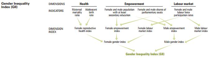 Gender Inequality Index (GII)   Human Development Reports (scheduled via http://www.tailwindapp.com?utm_source=pinterest&utm_medium=twpin&utm_content=post81455553&utm_campaign=scheduler_attribution)