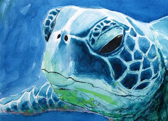 17 best images about sea turtle art on pinterest for Sea life paintings artists