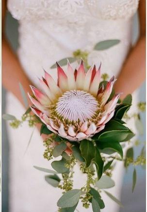 via style me pretty; protea