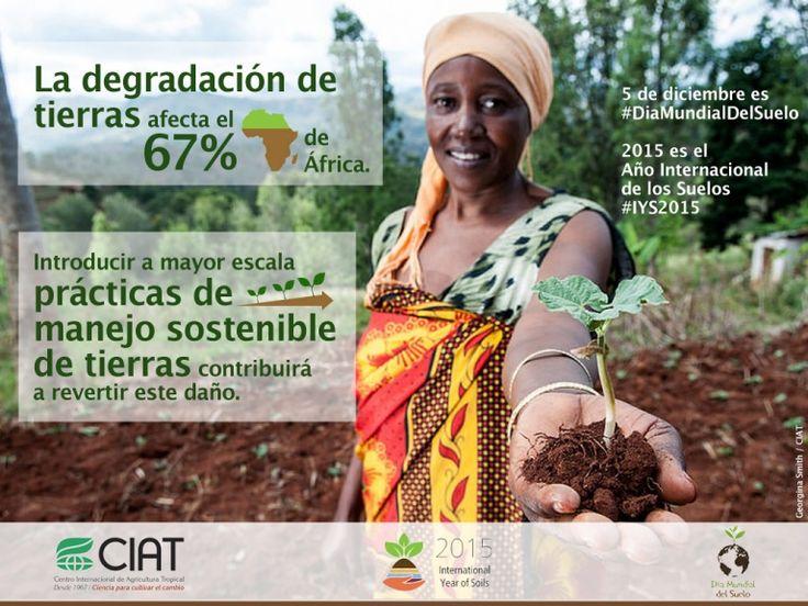 #WorldSoilDay / La degradación de tierras afecta el 67% de África.