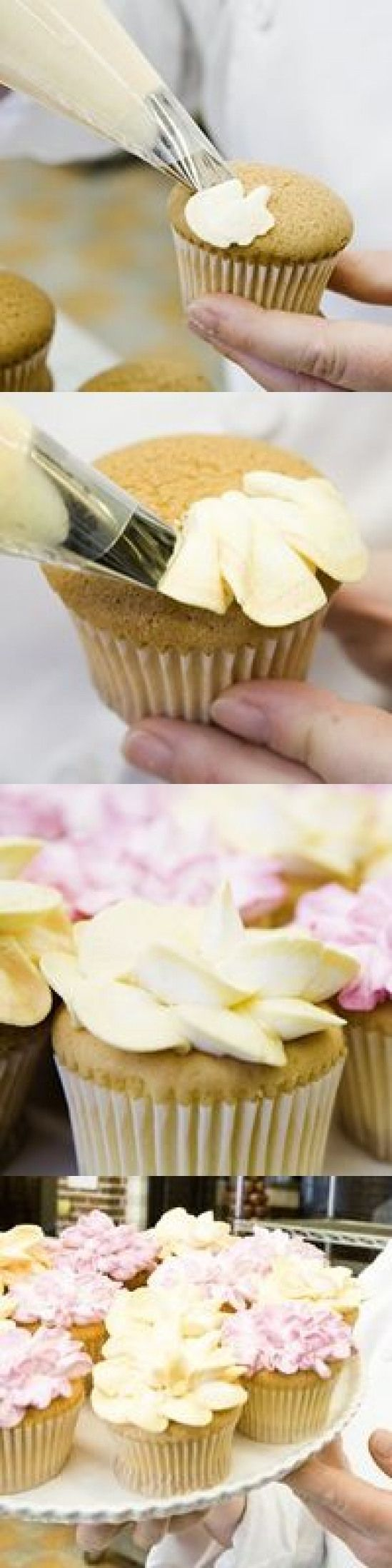 Whats playfully sweet and utterly delightful? Cupcakes! In ...