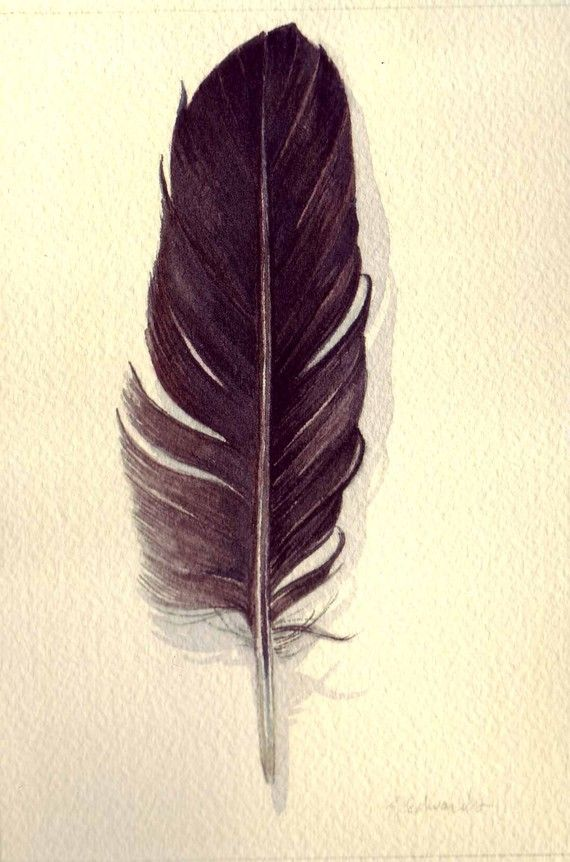 Feather Watercolor 134 Crow Feather  Original by jodyvanB on Etsy