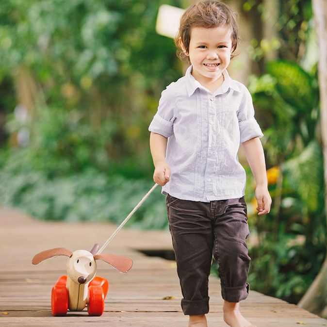 Founded in 1981, PlanToys makes its toys from rubber wood, a sustainable by-product of the latex industry's harvesting of trees used for natural rubber production | Happy Puppy Pull Along | BuyMeOnce