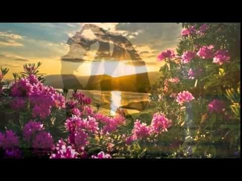 Duran Duran ☼ Sunrise
