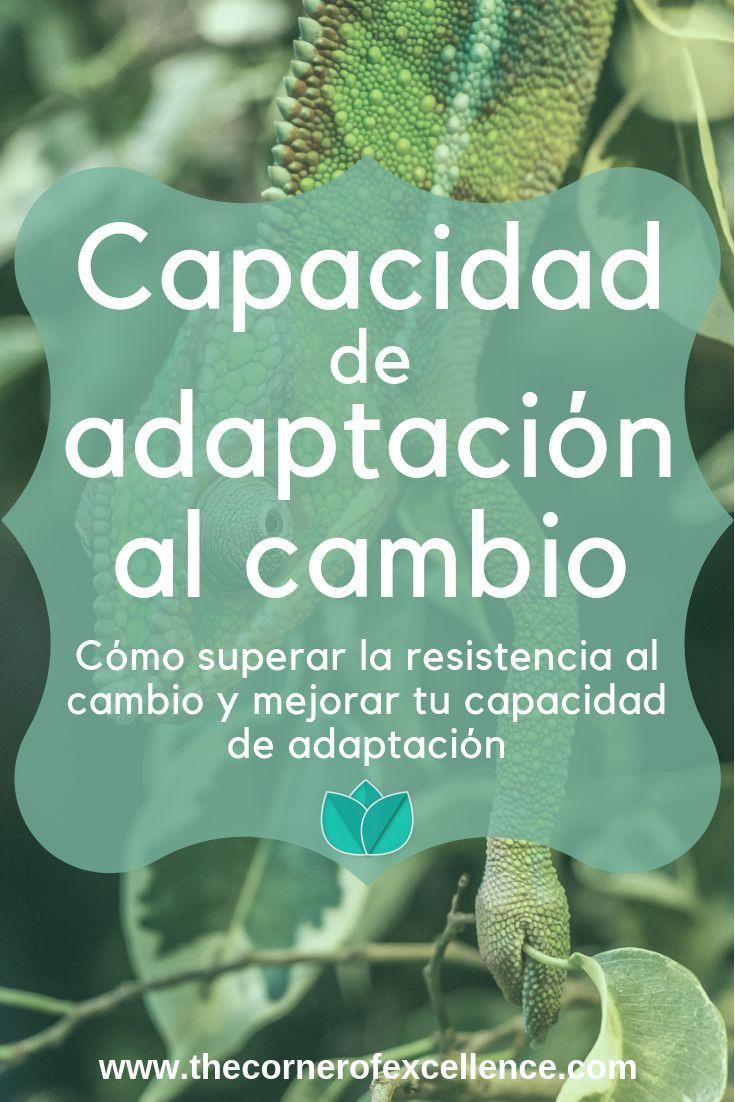 Cómo Mejorar Tu Capacidad De Adaptación Al Cambio The Corner Of Excellence Psicologia En Linea Capacidades Personales Adaptación