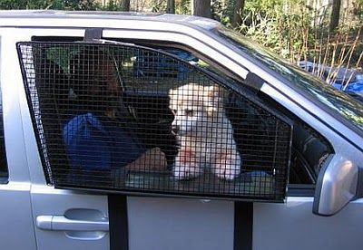"""The """"BreezeGuard"""" is effectively a protective cage that mounts into a car door allowing dog passengers to enjoy the breeze in safety."""