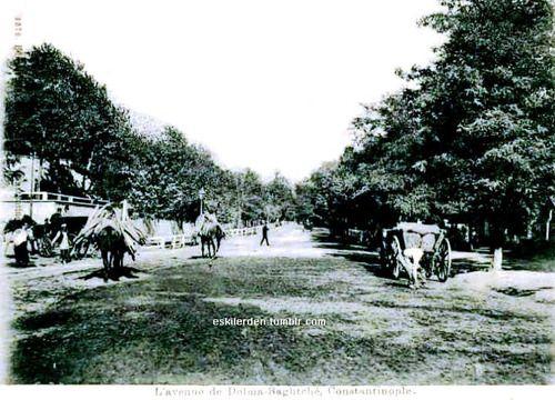 Dolmabahçe ile Beşiktaş arasındaki ağaçlıklı yol. Ne kadar değişmiş değil mi? (1900)