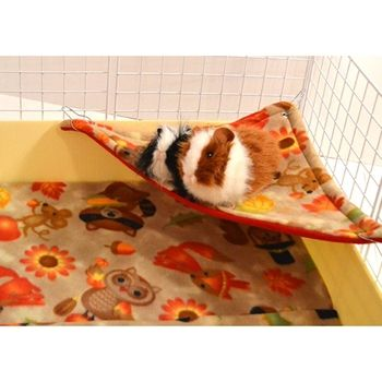 Corner Hammock shown in cage with two guinea pigs