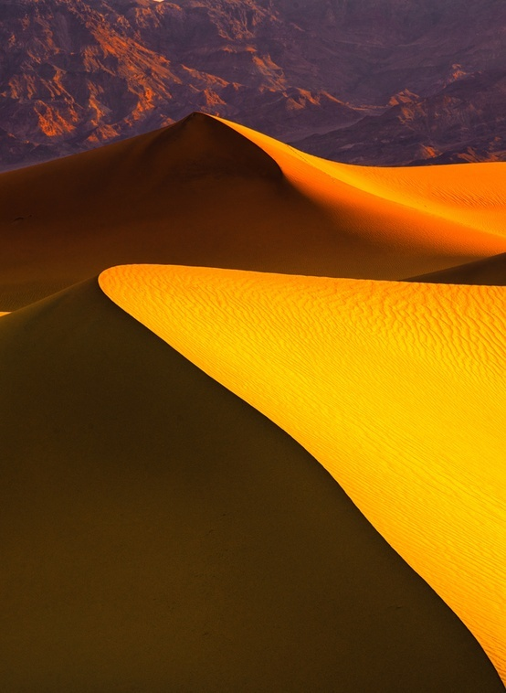 Golden Sand Dunes, Death Valley, California by Ani Pandit