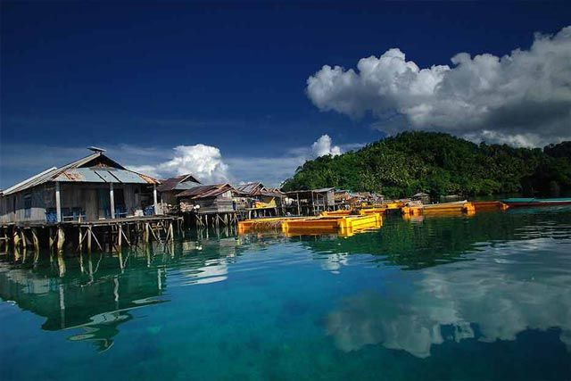 The Togean Festival 2013