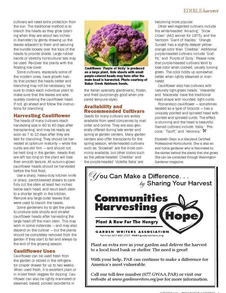#ClippedOnIssuu from Washington Gardener October 2015