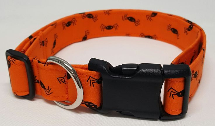 dog collar, black spiders, halloween dog collar, halloween collar, fall dog collar, fall collar, halloween, spiders, fall, autumn by Purfectpooch on Etsy https://www.etsy.com/listing/473331237/dog-collar-black-spiders-halloween-dog