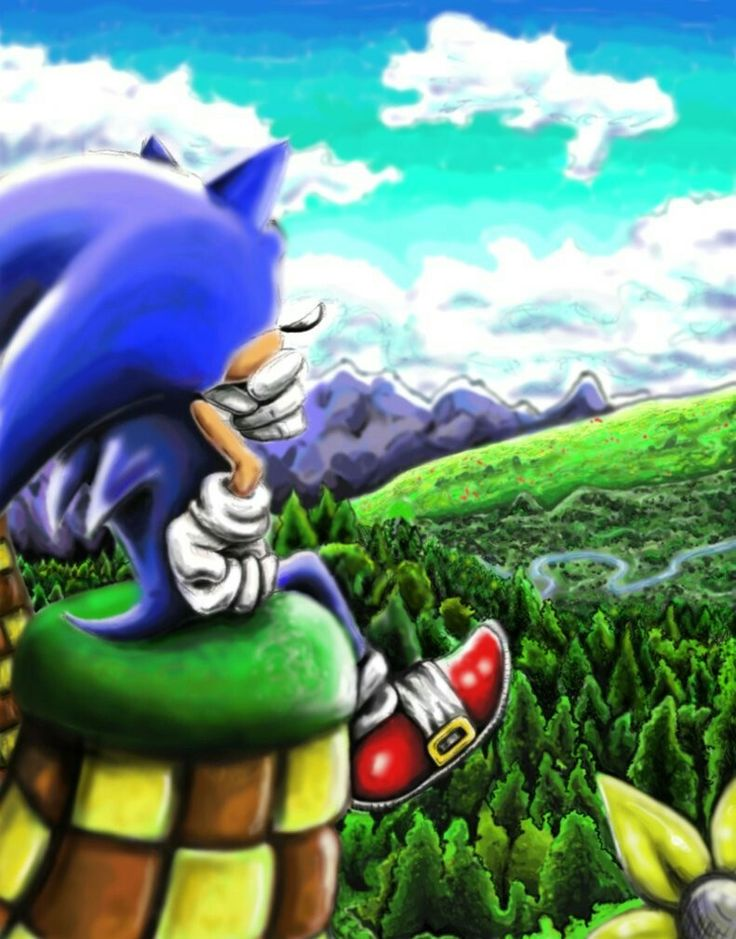 Sonic sitting and gazing at the scenery