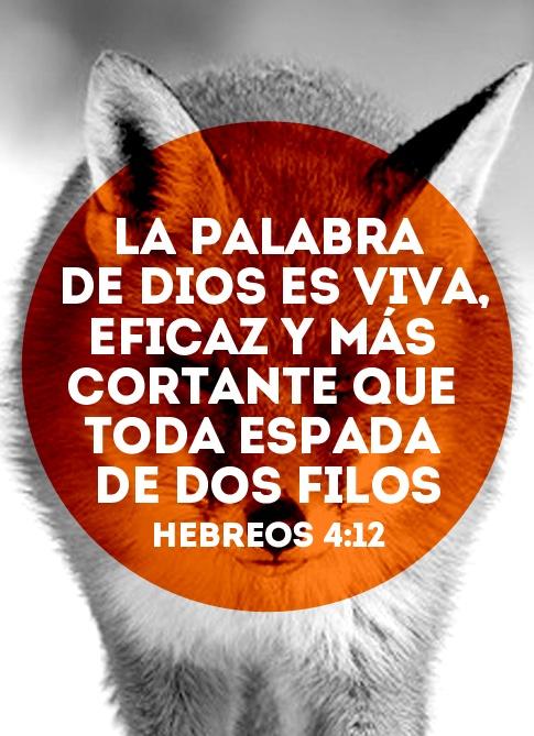 """""""La palabra de Dios es viva, eficaz y más cortante que toda espada de dos filos"""" - Hebreos 4:12"""