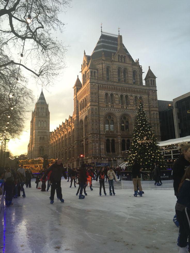 Londra, London: Natural History Museum - dicembre 2016