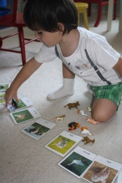 Farm Animals for All Ages from Montessori MOMents