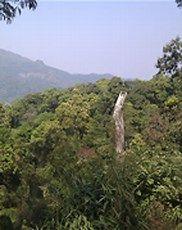 Image result for kaeng krachan national park thailand