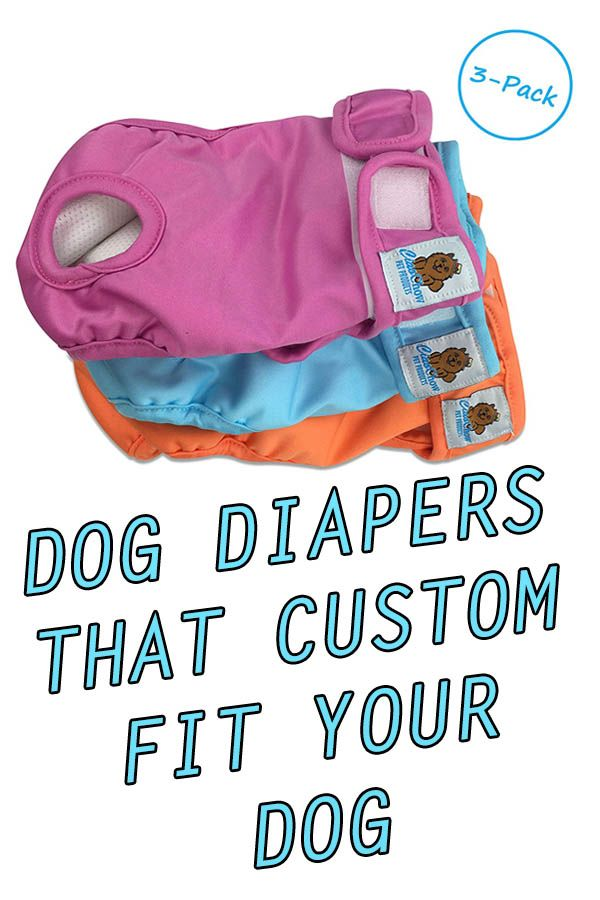 The Simple Dog Diapers are washable, reusable and adjust to your female dog! More economical and environmentally friendly than disposable diapers, and will help you save money in the long run.