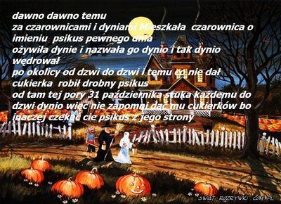 dynio story - foto historyjka dynio