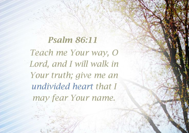 I will walk in your truth