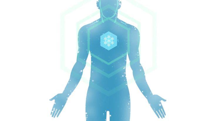 Freezlab Whole Body Cryo (Nederlands)