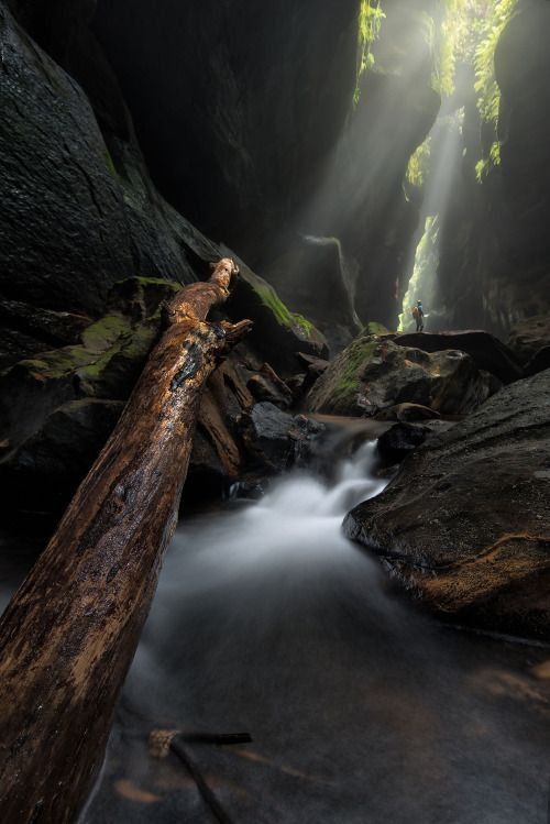 Rocky Creek Canyon - Wollemi National Park, Australia by Jake Anderson