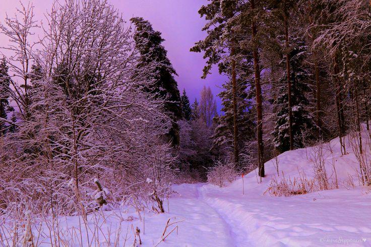 winter, snow, talvi, lumi