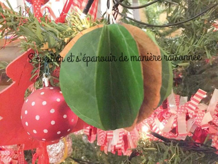 [DIY] Une boule décorative en feuilles d'arbres