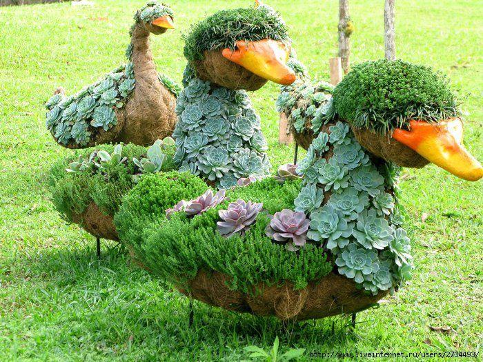 Três Patos - Topiaria dos jardins do Fazzenda Park Hotel de Gaspar  - Santa Catarina - Brasil