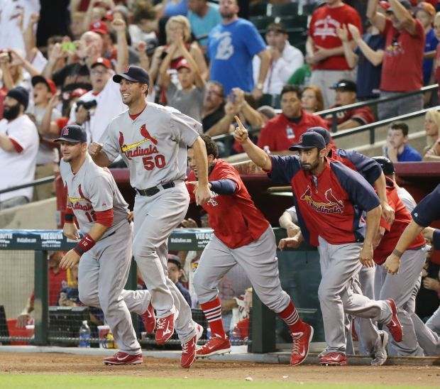 St. Louis Cardinals players run onto the field after the final out of a game between the Cardinals and the Diamondbacks on Sunday, Sept. 28, 2014. The Cardinals clinched the National League Central Division championship and will face the Los Angeles Dodgers in the NLCS. Photo by Chris Lee, clee@post-dispatch.com